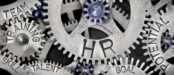 De medewerkers van HR